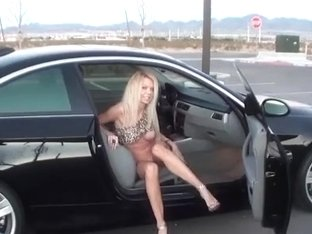 Barbi Wild Toy Ride In Car