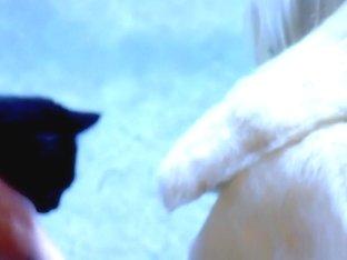 Crazy pornstar Puma Swede in best mature, solo xxx movie
