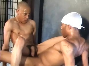 gaygroupsex thalia fotos porno