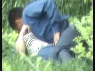 hidden cam - sex in park - csm