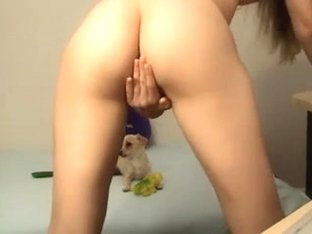 pup bored - honey teasing
