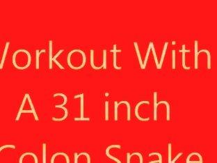 31 Colon Snake
