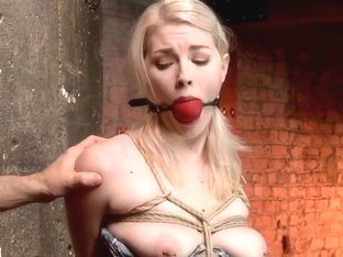 Suspended Anal Invasion for Newbie Blonde Squirting Slut