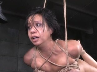 Bdsm submissive deepthroated and doggystyled