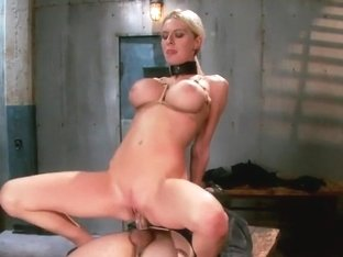 The Dismissal of a Big Tit, Bleach Blonde Porn Star