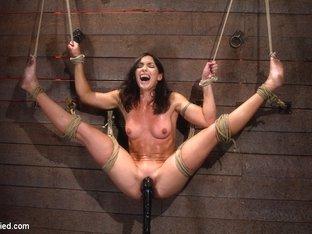 extreme blow job porn