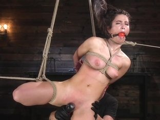 Hogtied Brunette Hot Ass Whipped
