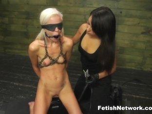 Amazing pornstars Halle Von Endures, Marina Angel, Halle Von in Best Blonde, Hardcore sex scene