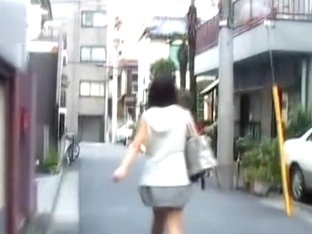 Adoring vivacious chick walking in the street while meeting some sharking guy