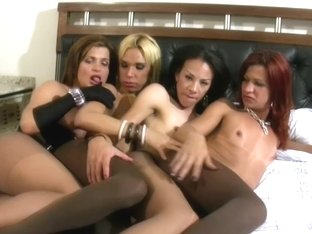 Four dolls with balls suck cumload from TS girlfriends cocks