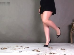 Alisa crushing roaches under her black sexy high heels.