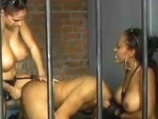 Breasty dark brown police makes prisoner engulf a massive thong on