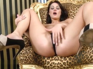 Nikki Sexx Zmovs