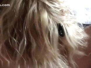 Blondie likes to engulf that boner
