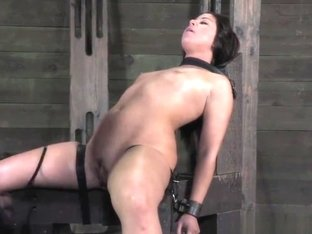 Male bdsm videos dom free necessary