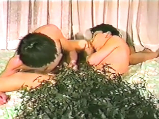 Astonishing adult movie gay Vintage wild exclusive version